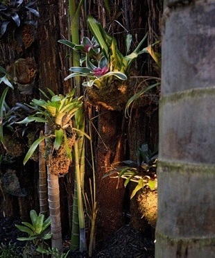Commercial and residential garden landscaping and grounds maintenance, Auckland wide
