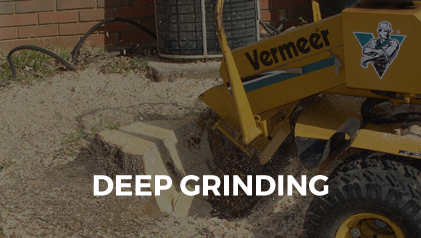 ASAP Stump Grinding