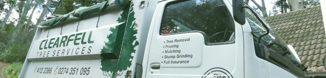 Clearfell Tree Services